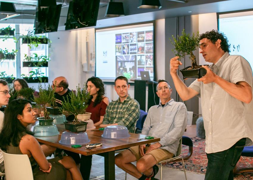 盆栽 ニューヨーク 教室